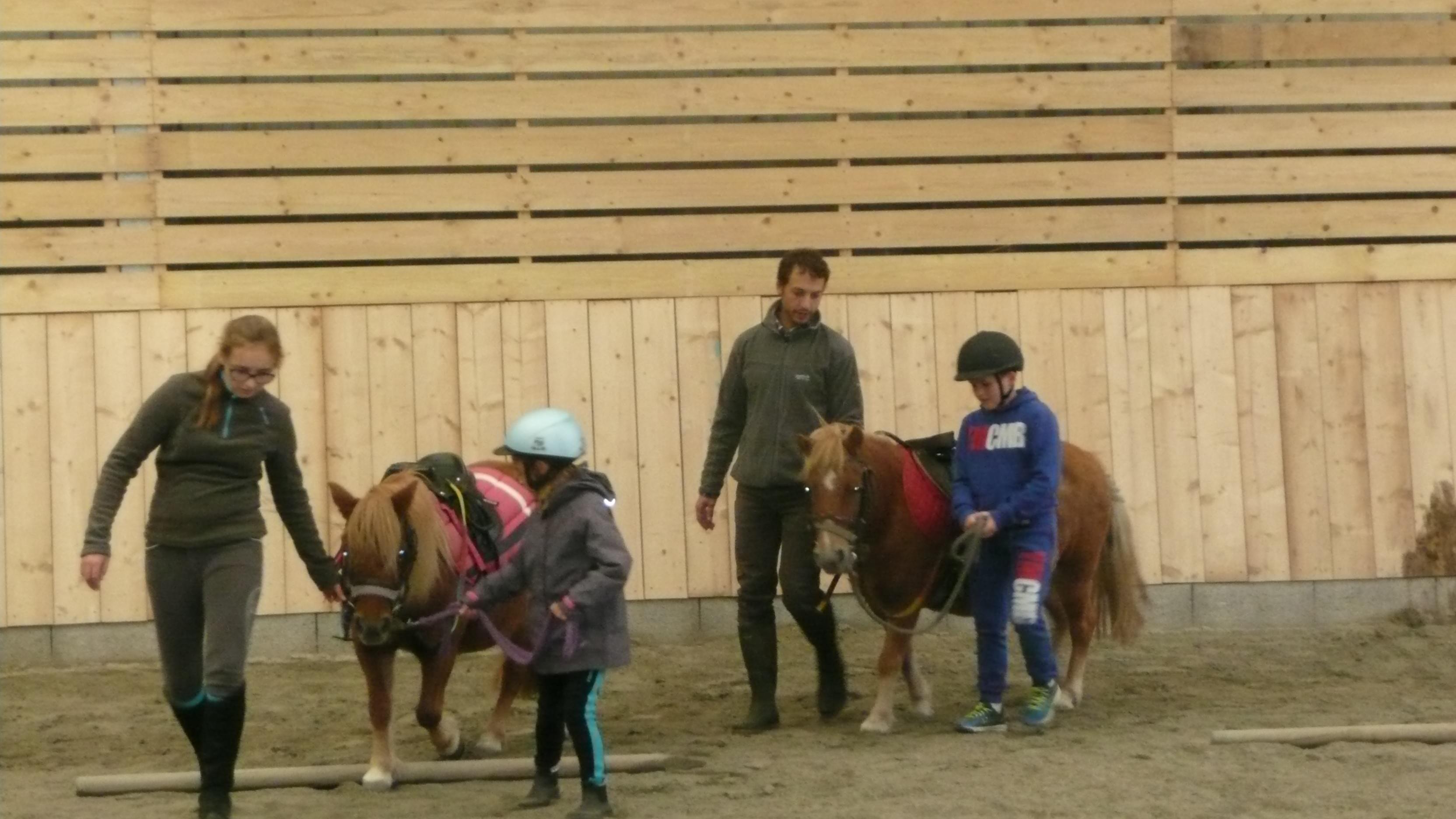poneys centre équestre kerbiriou