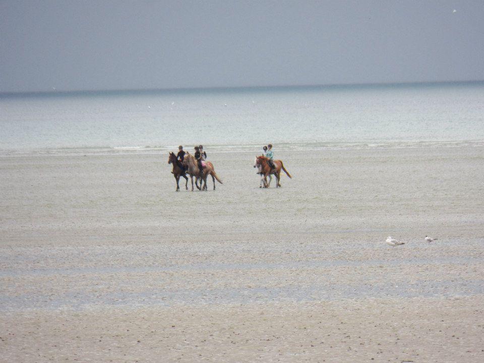 randonnées sur la plage